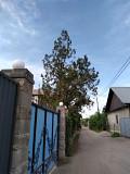 Дача в аренду. Иссык. Алматы